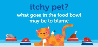 itchy pet banner